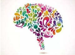 新贝青少儿告诉你脑潜能开发到底多重要